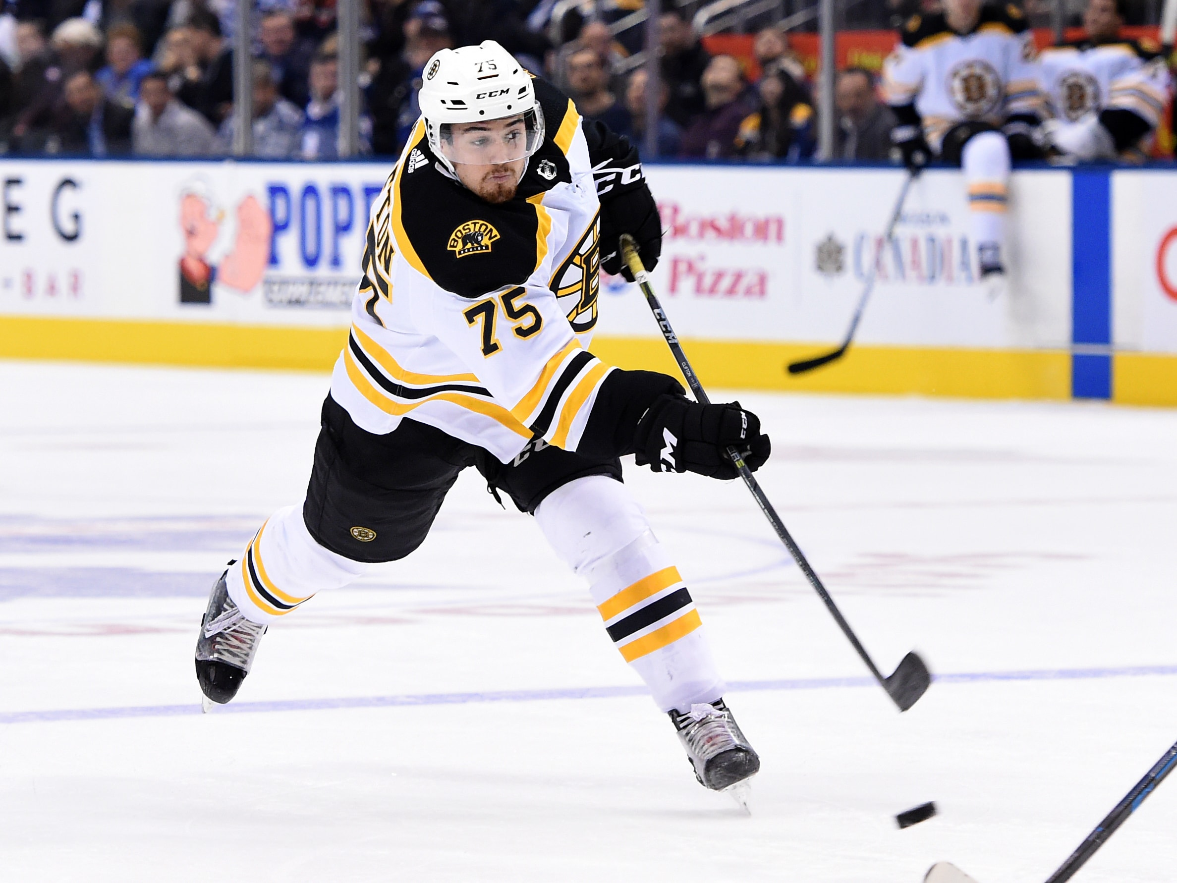 Nov 26, 2018; Toronto, Ontario: Boston Bruins defenceman Connor Clifton shoots the puck against Toronto Maple Leafs in the first period at Scotiabank Arena. (Dan Hamilton-USA TODAY Sports)