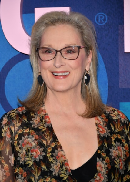 Streep has a charity called Silver Mountain Foundation for the Arts, which provides various arts education grants to colleges around the country. According to Inside Philanthropy, these include Streep's alma mater of Vassar College, as well as  Indiana University and Poly Prep Country Day School in Brooklyn, NY